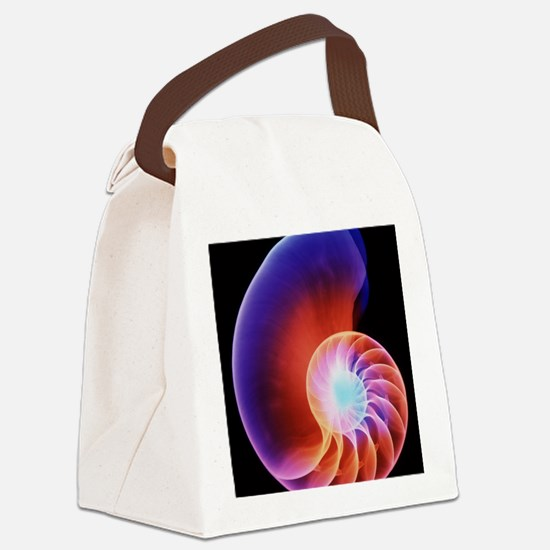 Coloured X-ray of the Nautilus sh Canvas Lunch Bag