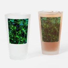 Immunofluorescent LM of astrocyte b Drinking Glass