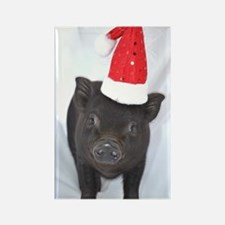 Micro pig with Santa hat Rectangle Magnet