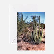 organ pipe cactus 2 Greeting Card