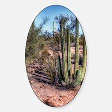 organ pipe cactus 2 Decal