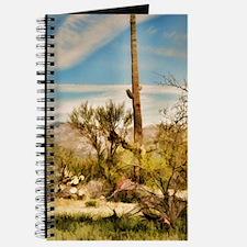 desert saguaro Journal