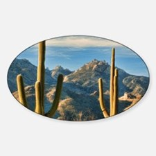 saguaro vista Decal