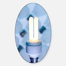 Energy-saving light bulb Decal