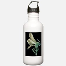Female parasitoid wasp Water Bottle
