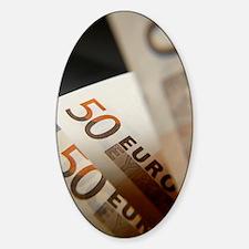 Euro bank notes Decal