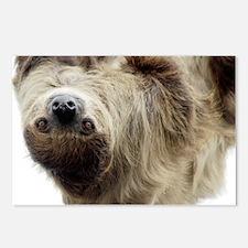 Sloth 5x7 Rug Postcards (Package of 8)