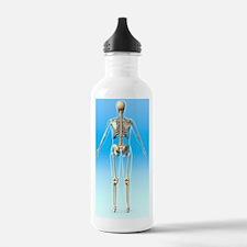 Female skeleton, artwo Water Bottle