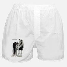 Diesel mask Boxer Shorts