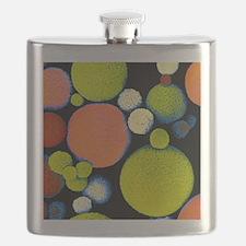 False colour SEM of Sephadex beads Flask