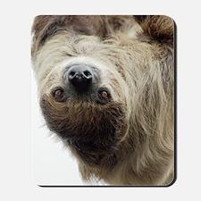 Sloth iPhone Slider Case Mousepad