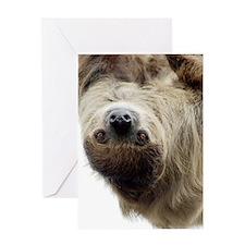 Sloth iPhone Slider Case Greeting Card