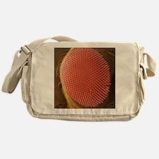 Fruit fly compound eye, SEM Messenger Bag