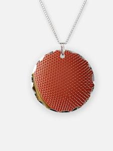 Fruit fly compound eye, SEM Necklace Circle Charm