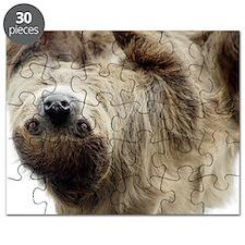 Sloth Pillow Case Puzzle