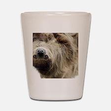 Sloth Pillow Case Shot Glass