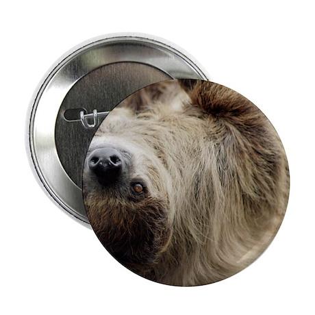 """Sloth Pillow Case 2.25"""" Button"""