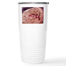 Interior of a bone, SEM Travel Mug