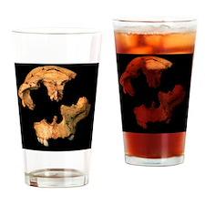 Fossilised skull, Gran Dolina Drinking Glass