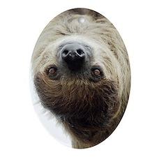 Sloth Galaxy Case 2 Oval Ornament
