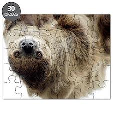 Sloth Laptop Skin Puzzle