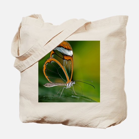 Glasswing butterfly Tote Bag