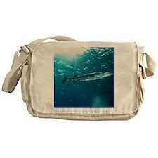 Great barracuda Messenger Bag