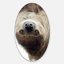 Sloth Kindle Sleeve Sticker (Oval)