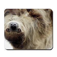 Sloth 3x5 Rug Mousepad