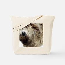 Sloth Messenger Bag Tote Bag