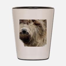 Sloth Messenger Bag Shot Glass