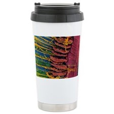 Iris of the eye, SEM Travel Mug