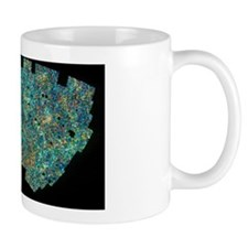 Map of galaxy distribution of 2 million Mug