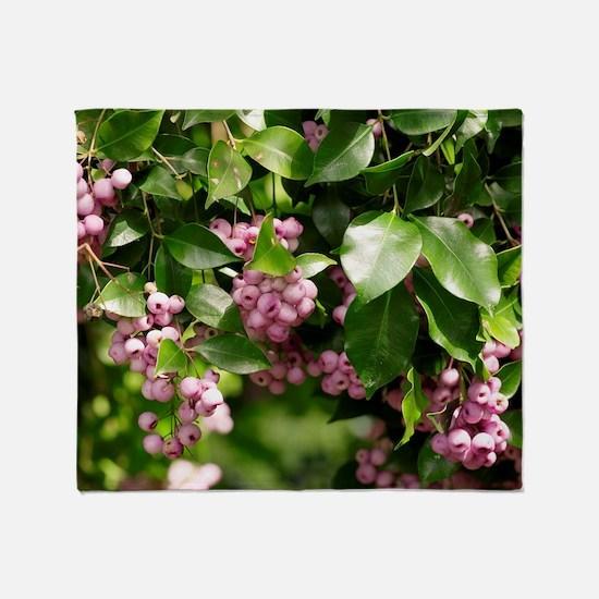 Lilli-pilli berries (Acmena smithii) Throw Blanket