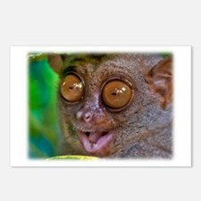 Stoked Tarsier Postcards (Package of 8)