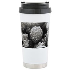 Monocyte white blood ce Travel Coffee Mug
