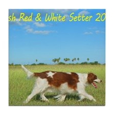 2013 Irish Red and white Setter Calen Tile Coaster