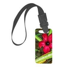 imperfection Luggage Tag