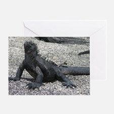 marine iguana January Greeting Card