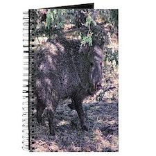 javelina Journal
