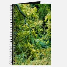 green spring Journal