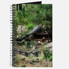 forest creek bridge Journal