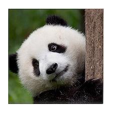Panda Cub Tile Coaster
