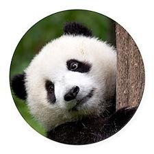 Panda Cub Round Car Magnet