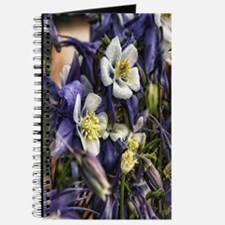 white wisteria Journal