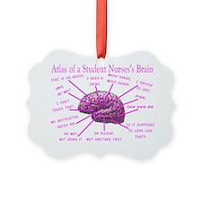 atlas student nurse brain PINK Ornament