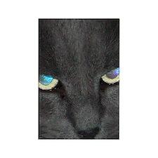 Unique Cat w/ Cool Eyes Rectangle Magnet