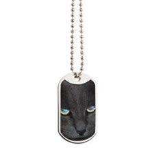 Unique Cat w/ Cool Eyes Dog Tags