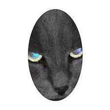 Unique Cat w/ Cool Eyes Oval Car Magnet