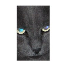 Unique Cat w/ Cool Eyes Decal